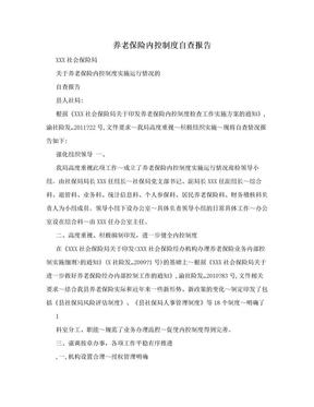 养老保险内控制度自查报告.doc