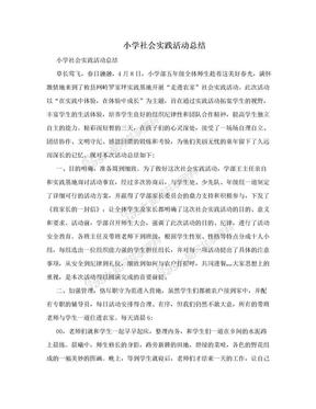 小学社会实践活动总结.doc