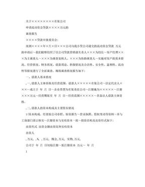 公司类贷款调查报告范文格式.doc
