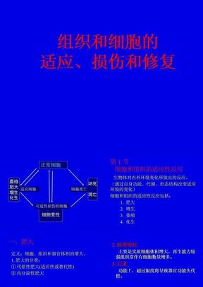 病理學 2 第1章 細胞和組織的適應、損傷和修復(病理學基礎教學課件).ppt