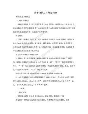 莫干山镇总体规划简介.doc