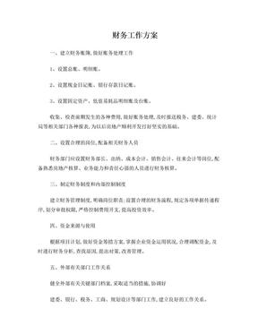 财务工作方案.doc