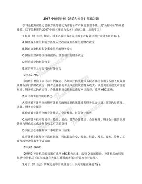 2017中级审计师《理论与实务》基础习题.docx