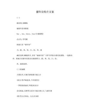 猪年宣传片文案.doc