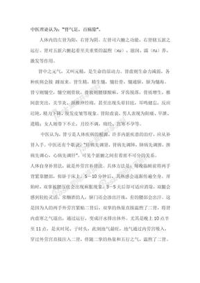 中医肾理论.doc