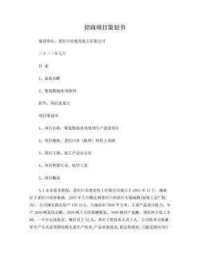 招商项目策划书.doc