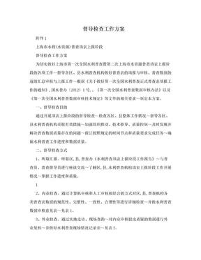 督导检查工作方案.doc