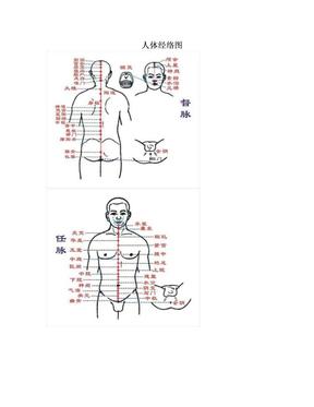 人体经络图.doc