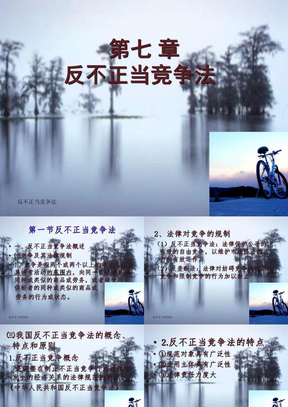 经济法(反不正当竞争法).ppt