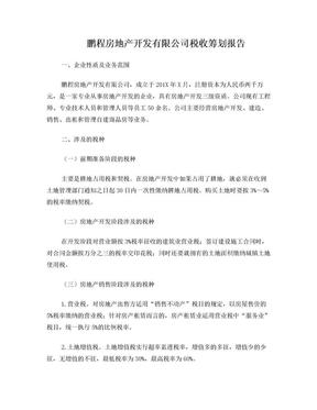 房地产公司税收筹划报告.doc
