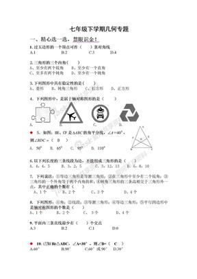 七年级下学期几何专题(附参考答案).doc