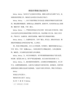 村秸秆禁烧目标责任书.doc