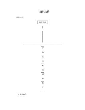 淘宝网店运营组织结构.doc