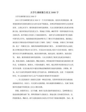 大学生调研报告范文5000字.doc
