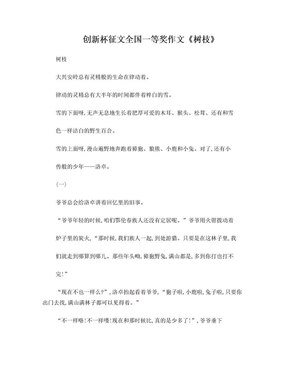 创新杯征文全国一等奖作文《树枝》.doc