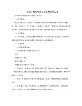 小学防溺水事故专项整治活动方案.doc