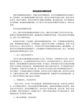 初中信息技术课教学反思.docx