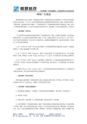 网络广告策划.docx