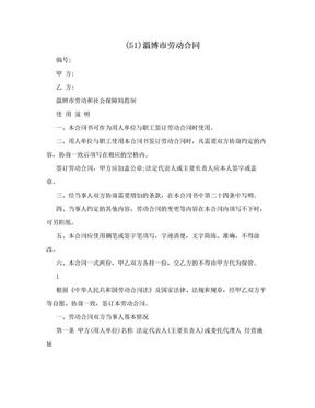 (51)淄博市劳动合同.doc