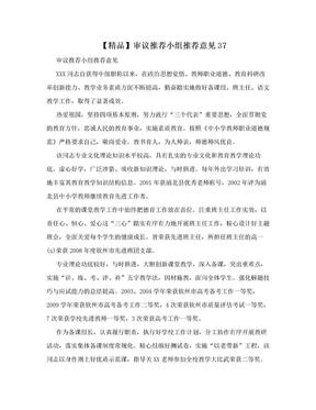 【精品】审议推荐小组推荐意见37.doc