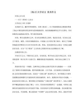 [练习]大学语文  优秀作文.doc