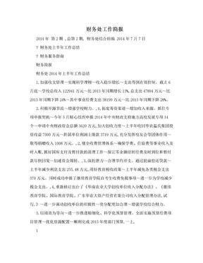 财务处工作简报.doc