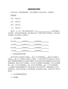 注资合作协议书范本.docx