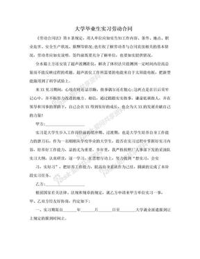 大学毕业生实习劳动合同.doc