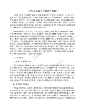 小学义务教育阶段办学标准自查报告.docx
