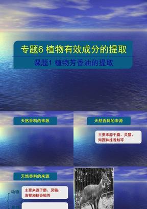 09.07.12 高三生物《专题6课题1 植物芳香油的提取》.ppt