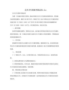 公共卫生绩效考核总结.doc.doc