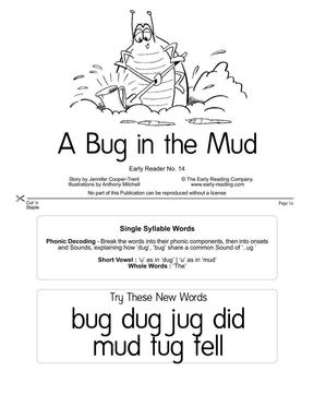 A Bug in the Mud.PDF