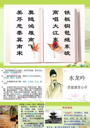 8《水龙吟·登建康赏心亭》.ppt