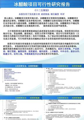 冰醋酸项目可行性研究报告.ppt