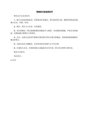 财务会计安全责任书.docx