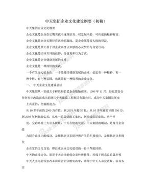 中天集团企业文化建设纲要(初稿).doc