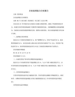 企业盈利能力分析报告.doc