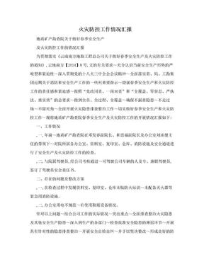 火灾防控工作情况汇报.doc