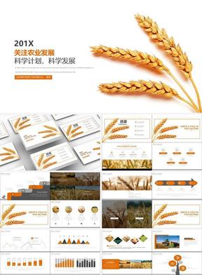 农业发展计划工作总结.pptx