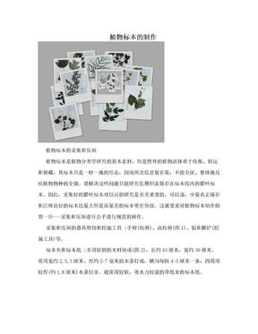 植物标本的制作.doc