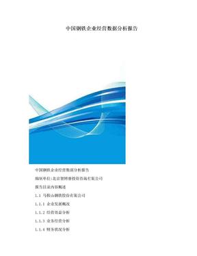 中国钢铁企业经营数据分析报告.doc