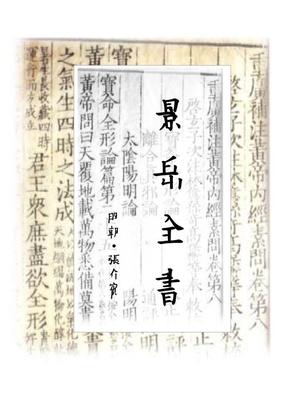 景岳全书.pdf