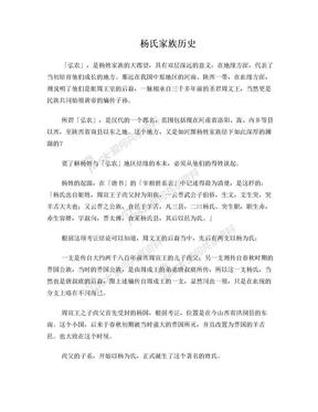 杨氏家族历史.doc