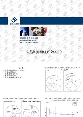 提高营销组织效率PPT(企业培训课件).ppt