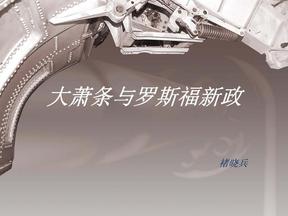 大萧条与罗斯福新政.pdf