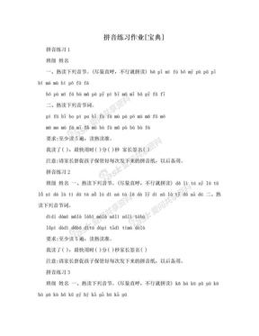 拼音练习作业[宝典].doc