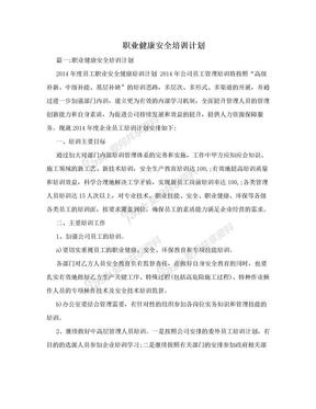 职业健康安全培训计划.doc