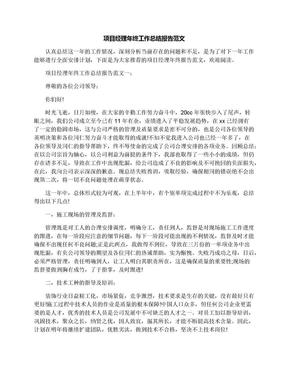 项目经理年终工作总结报告范文.docx