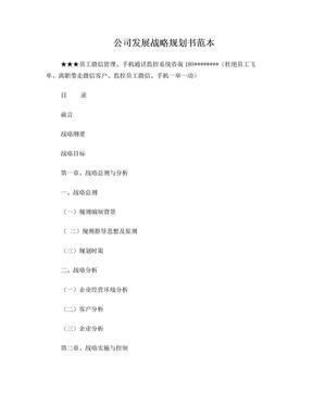 公司发展战略规划书范本.doc