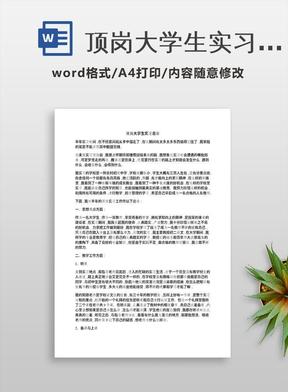 顶岗大学生实习总结.docx